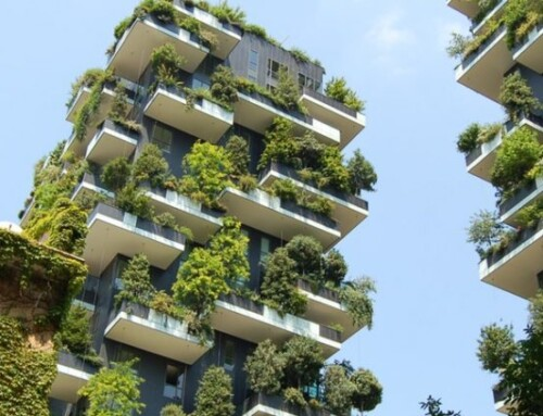 Green Product Certification for Building Materials:  Rapid Growth Driven by Government