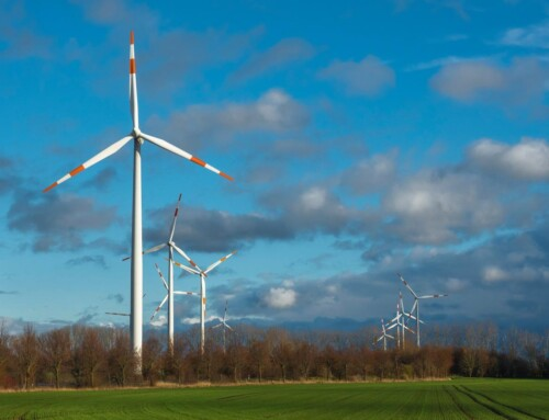 China Takes Action to Promote Carbon Neutrality